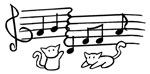 White Kitty Notes