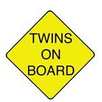 Twins on Board