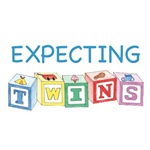 Expecting Twins Blocks