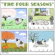 A Keeshond's Four Seasons