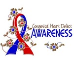 Awareness 6 Congenital Heart Defect Tees