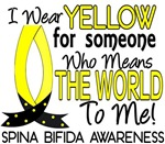 Means World To Me 1 Spina Bifida Shirts