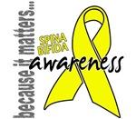 Awareness 1 Spina Bifida Shirts
