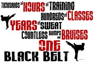 ONE Black Belt 2 Karate Shirts Apparel Gifts