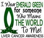 Means World To Me 1 Liver Cancer Shirts