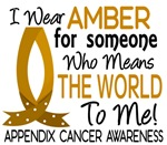 Means World To Me 1 Appendix Cancer Shirts