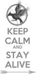 Keep Calm Catching Fire