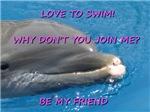 Love to swim, be my friend