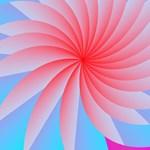 Passion Flower Pink Panties