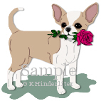 Chihuahua Red Rose