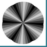 Black Illusion
