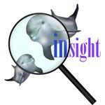 Dolphin Insight
