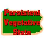 Pennsylvania - Persistent Vegetative State