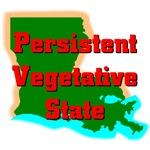 Louisiana Persistent Vegetative State
