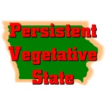 Iowa - Persistent Vegetative State
