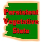 Arizona - Persistent Vegetative State