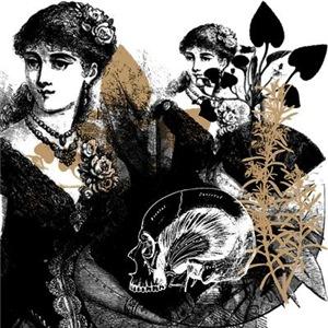 Vanitas Collage