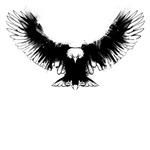 Eagle Grunge