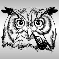 Studious Owl