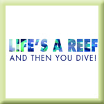 Life's A Reef