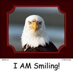 I AM Smiling! Bald Eagle Collection