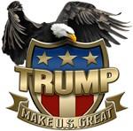 Trump Election Shield