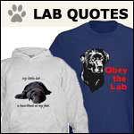 Lab Dog Quotes and Sayings