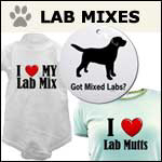 Mixed Lab Gifts