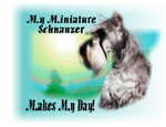 <h5>My Miniature Schnauzer Makes My Day</h5>