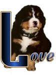 Berner Puppy Love Gifts