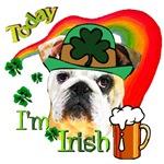 English Bulldog Today I'm Irish