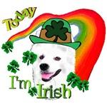 Today I'm Irish American Eskimo