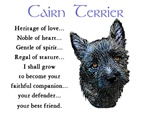 Cairn Terrier Puppy Love