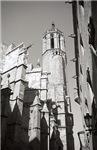 Gargoyles of La Catedral