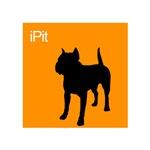 iPit Orange