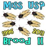 Miss Us Cicadas