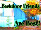 Backdoor Friends Are Best