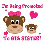 Promoted To Big Sister!