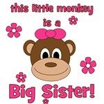 Little Monkey Is Big Sister!