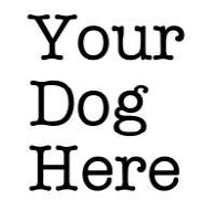 Your Dog Here