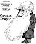 Darwin Products