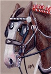 HORSES - SHIRE HORSE 1