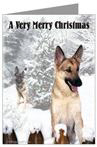 German Shepherd Very Merry