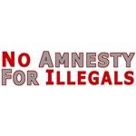 Immigrant No Amnesty D23
