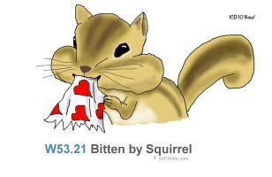 W53.21 Bitten by squirrel
