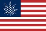 Sativa Leaf 420 Victory Flag