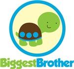 Turtle Biggest Brother