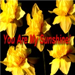 You Are My Sunshine: A passionate floral rainbow