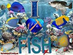 I Love Fish Section