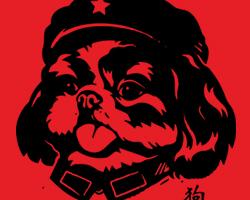 Chairman Shih Tzu Tongue